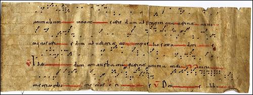 2016_10_20_Visigothic script fragments3