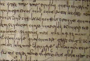Writing in cursive and minuscule script: polygraphism in medieval Galicia